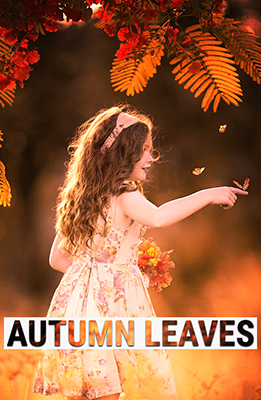 Autumn Leaves Photoshop Special Effects