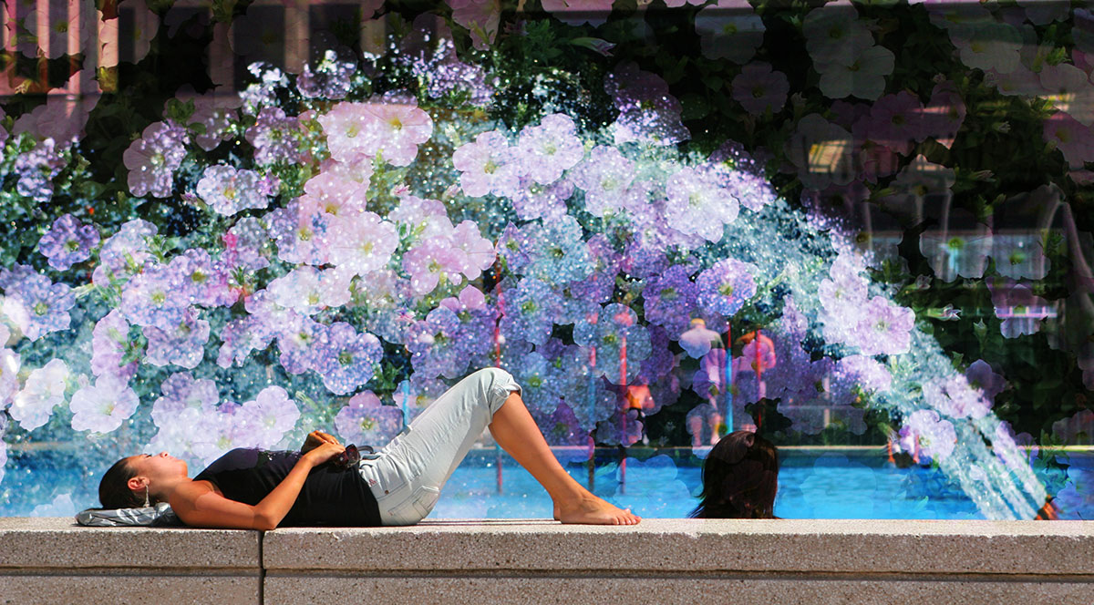Flowers Splash - Stock Photography