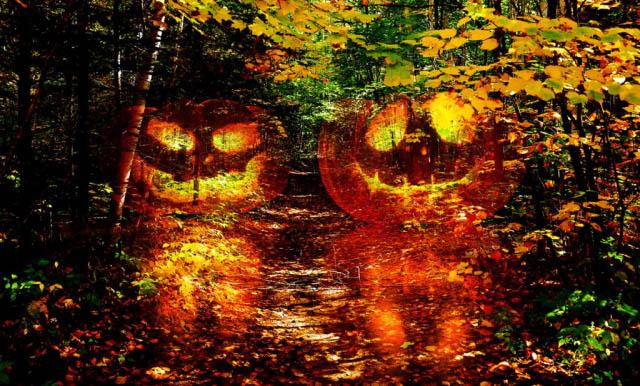 Halloween Scary Wood 1 - Stock Photography