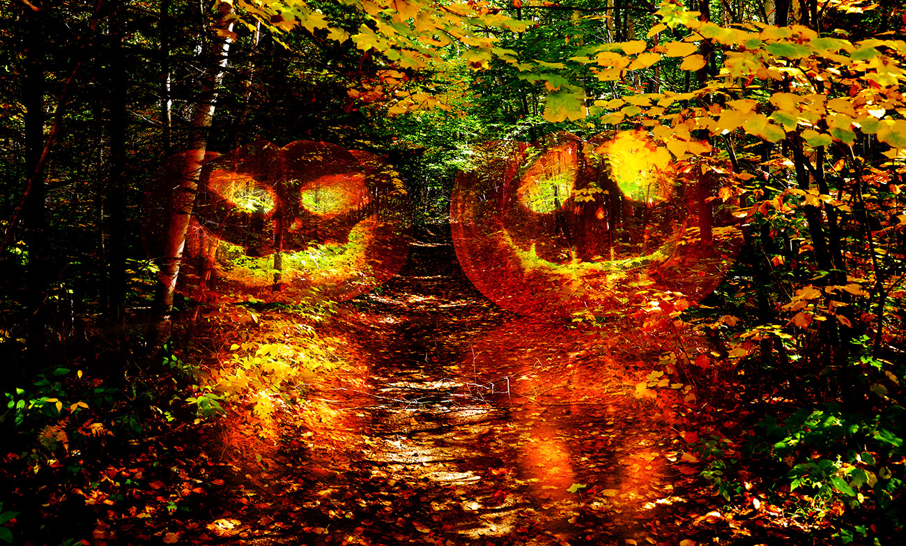 Halloween Scary Wood 1 - Stock Photography