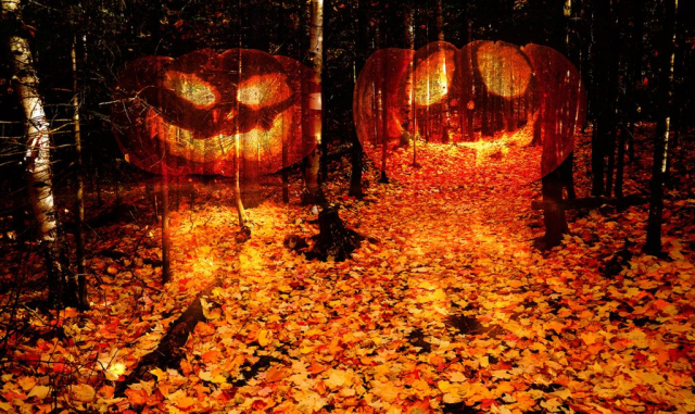Halloween Scary Wood 2 - Stock Photography