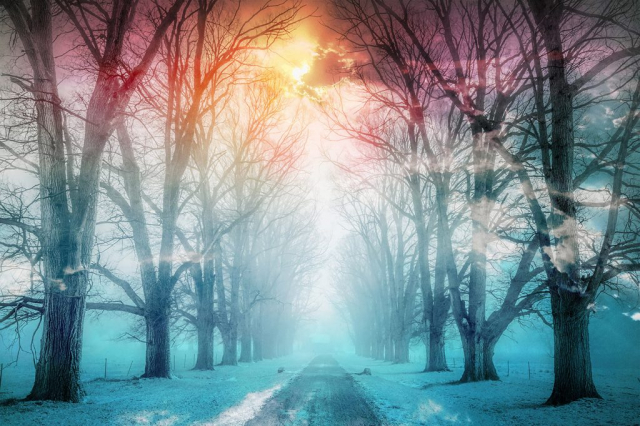 Wintery Road - Stock Photography