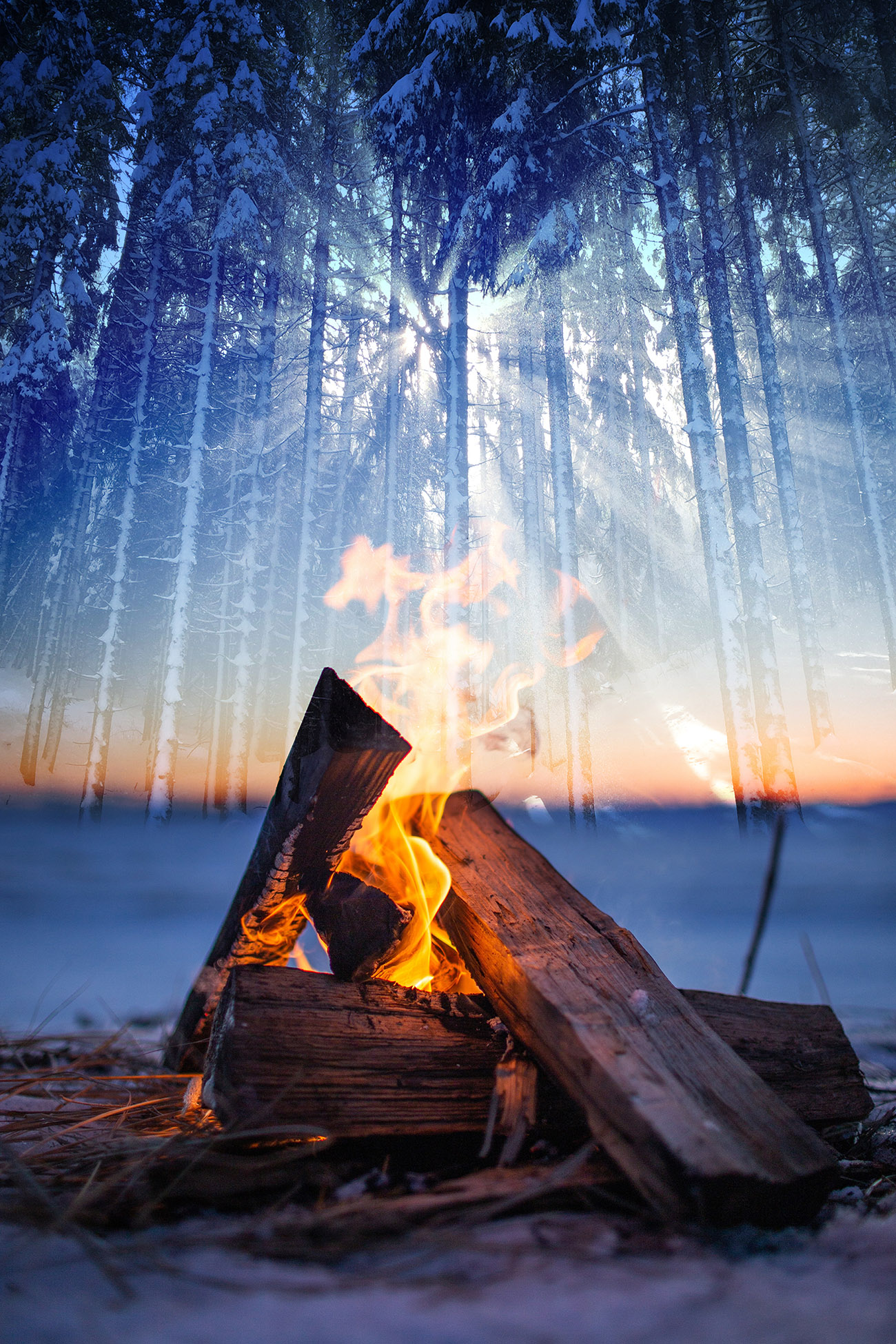 Wintery Wood Fire 01 - Stock Photography
