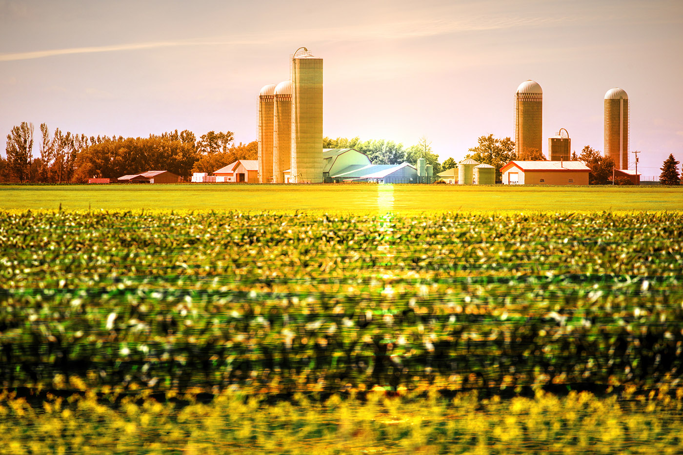 Modern Farmland and Agriculture Real Estate - Stock Photography